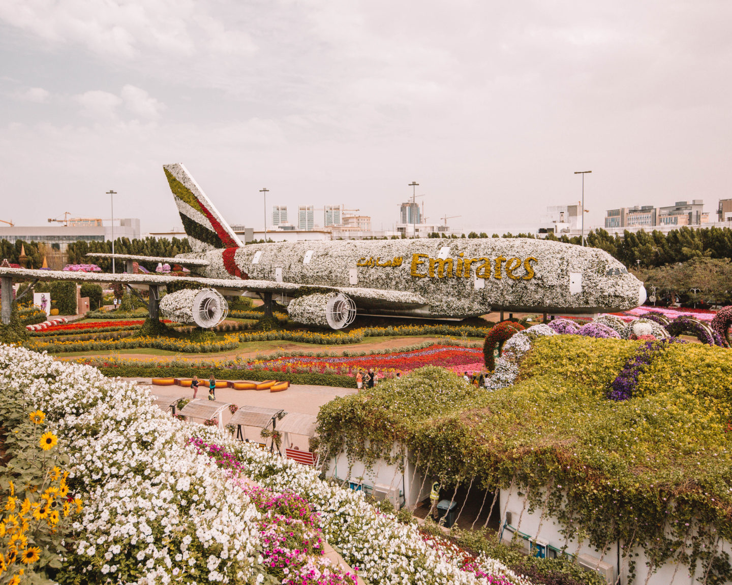 An Emirates plane covered in hundreds of thousands of flowers at the Miracle Garden in Dubai