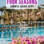 Four Seasons Sharm El Sheikh pool