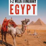 camel at the pyramids | egypt itinerary