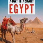 camel in egypt | egypt itinerary