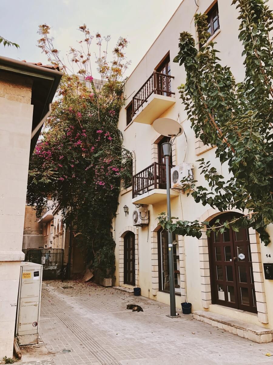 street in limassol cyprus
