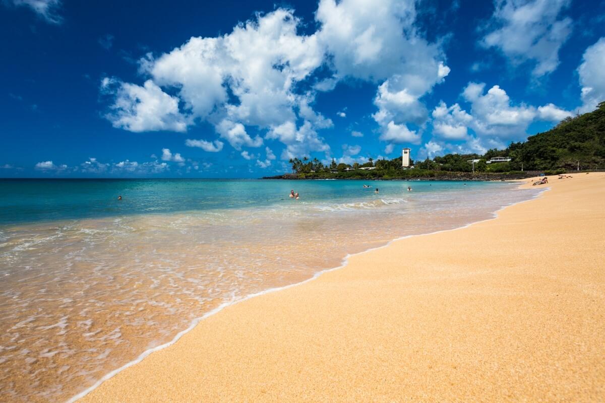 beautiful golden beaches waimea bay day trip form maui to oahu