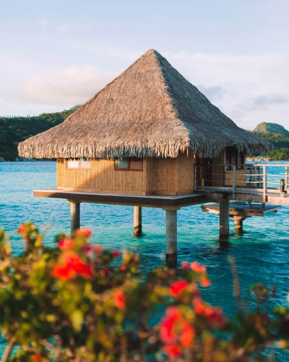 overwater bungalow in bora bora at the intercontinental bora bora le moana resort with reddish pink flowers framing the bottom of the photo